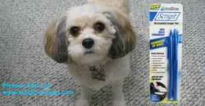 dog and Scrigit Scrapers