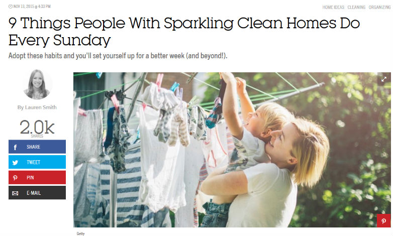 Cleaning article image