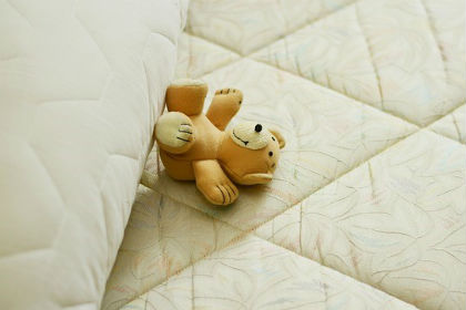 bear on bed