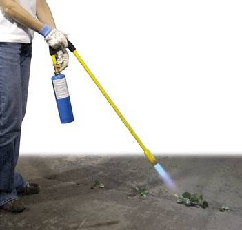 Mini Dragon weed killing torch